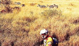 006-Motard-et-zebres-RIDER-AND-ZEBRAS
